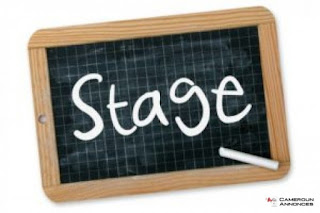 Offre de stage professionnel : assistante marketing et commercial