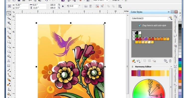 Coreldraw Graphics Suite X5 Download Full Latest Version