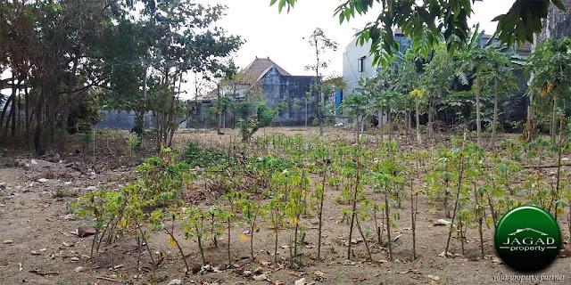 Tanah Luas jalan Kalimantan dekat UGM
