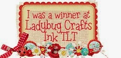 l am a winner at Ladybug crafts ink