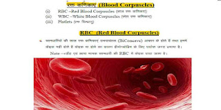 Biology Notes in Hindi PDF