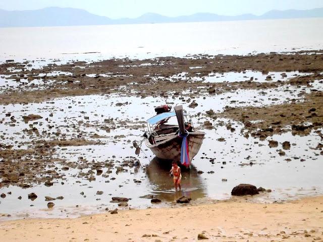 Thailand Strand Pine Bungalows Siedlung