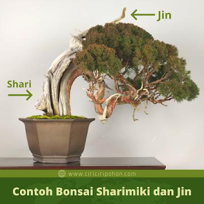 Contoh Bonsai Sharimiki dan Jin