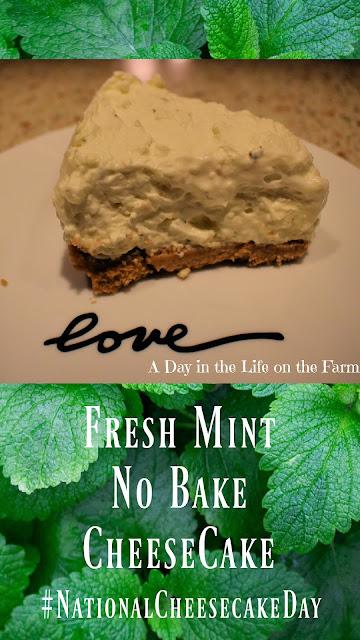 Fresh Mint Cheesecake Pin