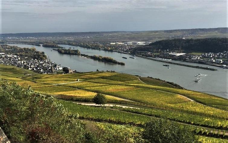 Blick auf den Rhein - Gondelfahrt