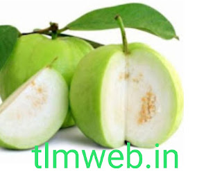 Guava Fruit Health  benifit - థైరాయిడ్ను దూరం చేసే జామపండు ..