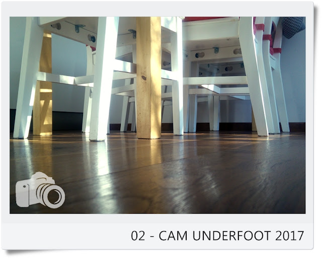 http://vonollsabissl.blogspot.it/2017/01/01-cam-underfoot-2017.html