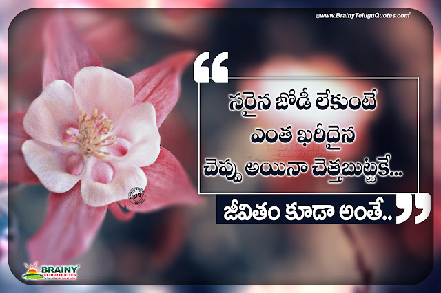 life quotes in telugu, famous words on life in telugu, daily life changing motivational words