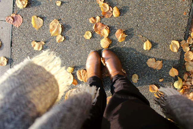 15 Reasons why Autumn is the best season