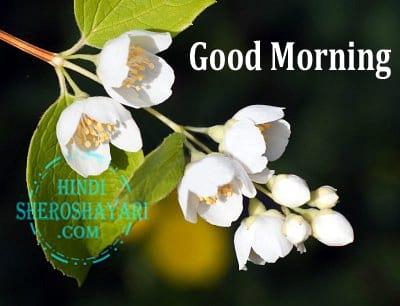 Good Morning Greetings With Jasmine Flowers