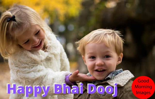 bhai dooj wishes for sister in hindi
