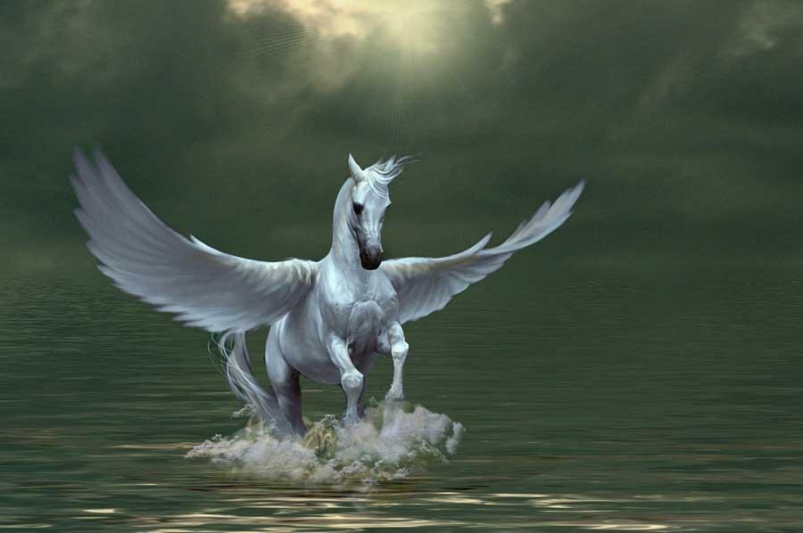 ngua co canh tieng anh la gi,ngua than pegasus,pegasus la gi,ngua co canh goi la gi,ngua than co canh,ngua co canh ngoai oi that,ngua pegasus co that,con ngua co canh,la pegasus florist & gifts,pegasus nghia la gi,Pegasus là gì,Ngựa có cánh tiếng Anh là gì,Ngựa thần Pegasus,Ngựa có cánh gọi là gì,Ngựa Pegasus có thật,Ngựa có cánh có sừng