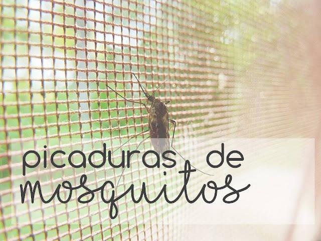 PICADURAS DE MOSQUITOS, remedios naturales