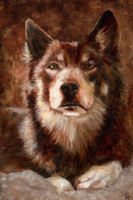 Wolf Oil Painting - A very direct look