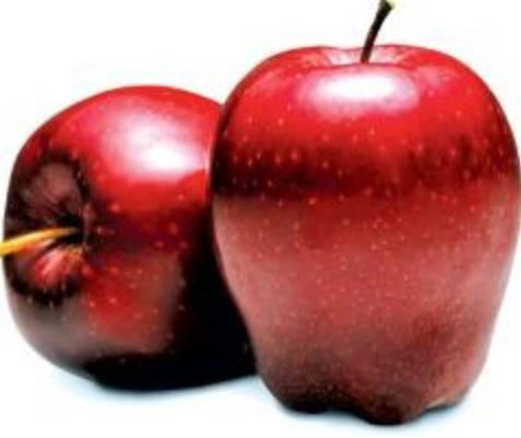 13 Manfaat Apel Merah Untuk Ibu Hamil