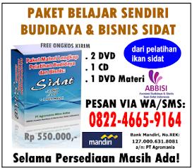 Paket Materi Belajar Sendiri Budidaya & Bisnis Ikan Sidat