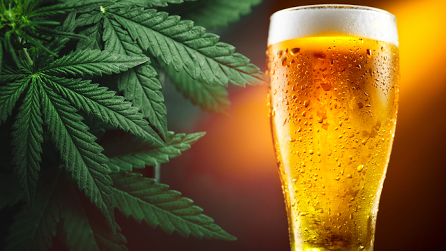 Cerveza de cannabis ¡Sí!