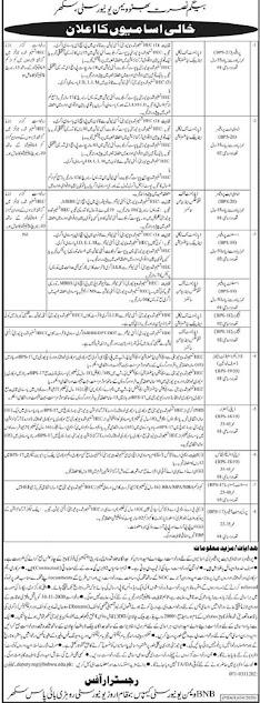 begum-nusrat-bhutto-women-university-jobs-2020-application