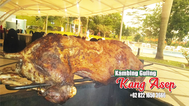Barbecue Kambing Guling Termurah di Bandung,barbecue di bandung,barbecue kambing guling,barbecue kambing