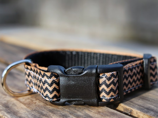 Review: DIY Dog Collar Kits