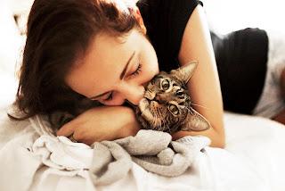 5 razones por las que tu gato es tu alma gemela