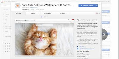 Tema kucing lucu, tema untuk browser Google Chrome, Tema Browser Gratis,