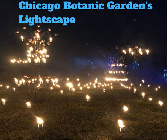 Reveling in Brilliant Lights at Lightscape at Chicago Botanic Garden {Plus a Giveaway}