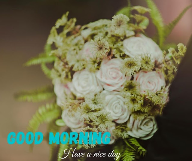 flower photo with good morning
