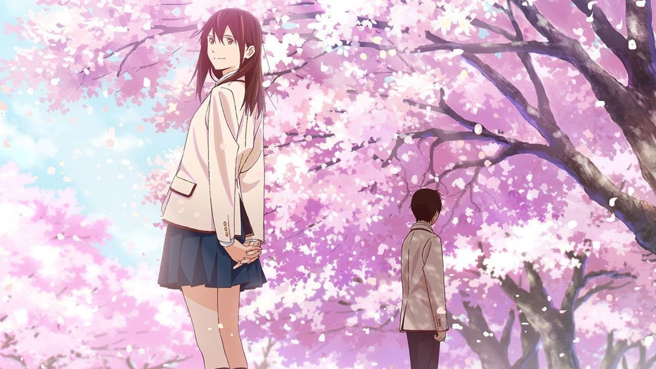 Kimi no Suizou wo Tabetai (I Want to Eat Your Pancreas) - BD/Bluray