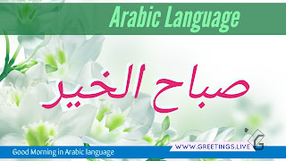 Light greenish white flowers back Ground Morning greetings  in Arabic Language