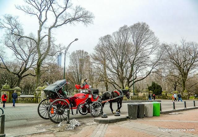 Carruagem no Central Park, Nova York