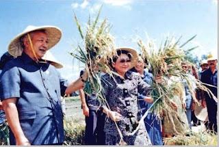 Biografi dan profil Soeharto