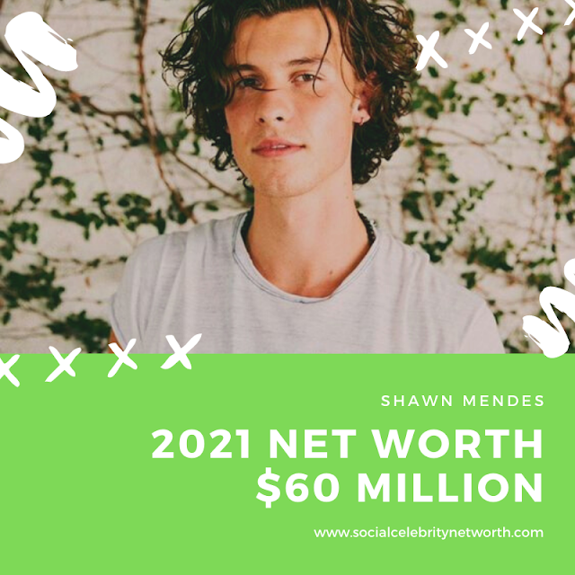 What is Shawn Mendes Net Worth