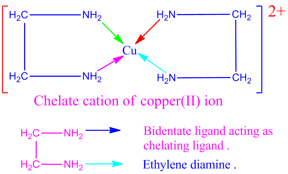 Chemsolve Net Chelate Complex Definition Examples Chelating And P Acid Ligand S