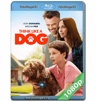 THINK LIKE A DOG (2020) 1080P HD MKV ESPAÑOL LATINO