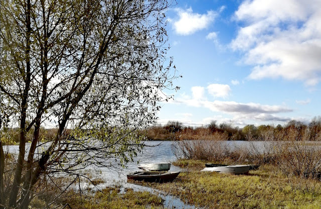 Лодки на реке