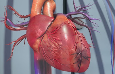 Find Out Why De-escalation of Dual Antiplatelet Therapy Is The Most Effective Approach in Acute Coronary Syndrome Treatment, Study Reveals