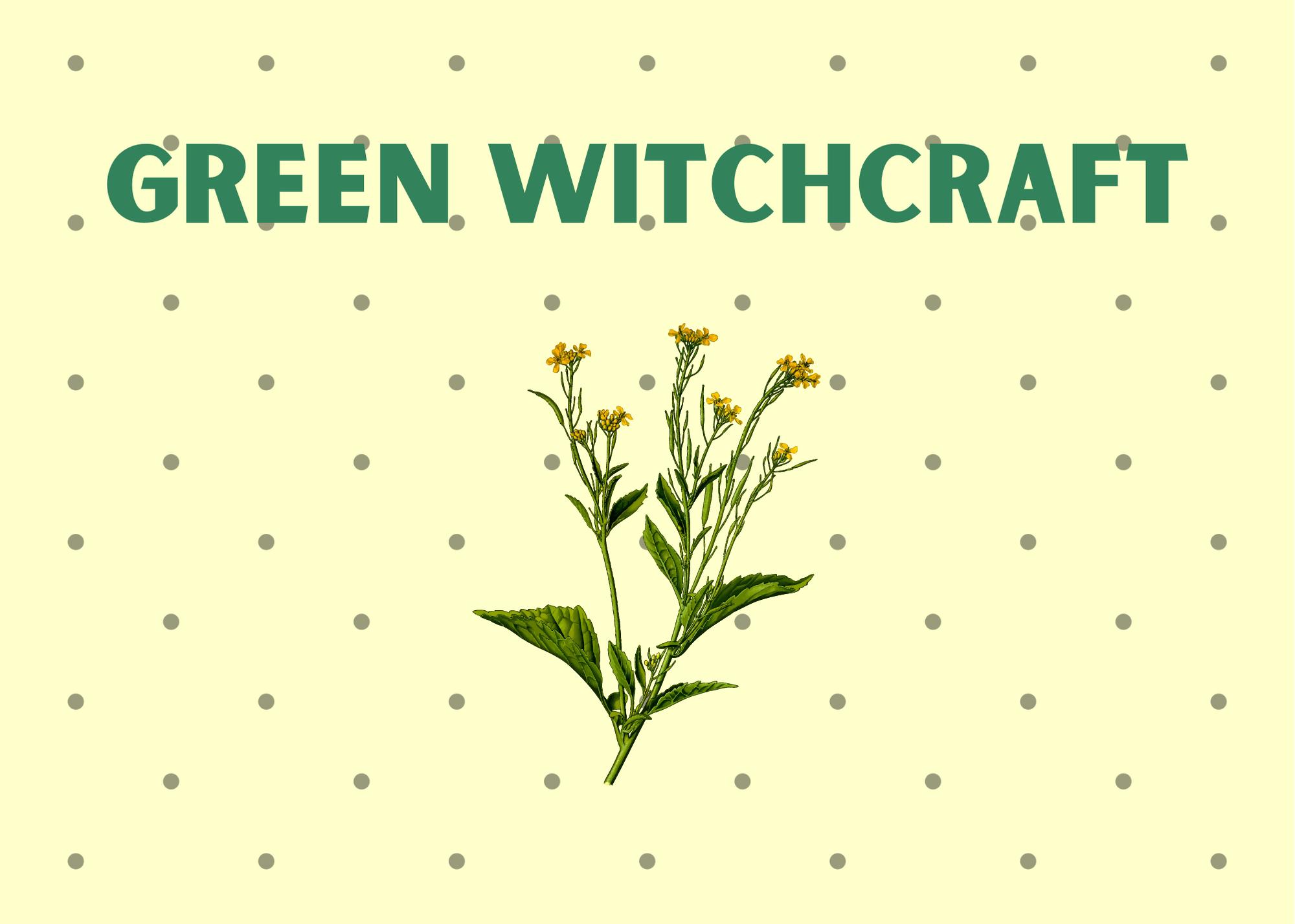 Green magic, green witch magic, green magic spells, herbal spells