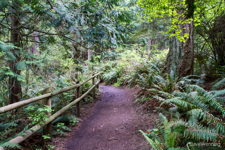 North Beach Trail, Deception Pass State Park