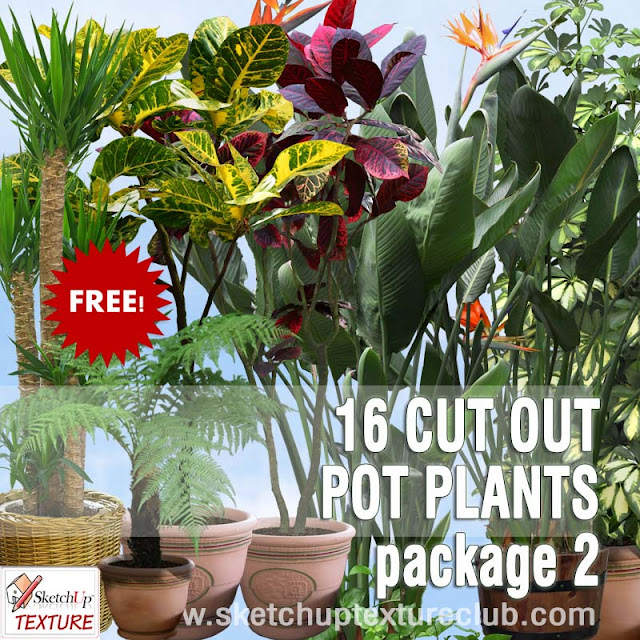 png pot plants collection 2