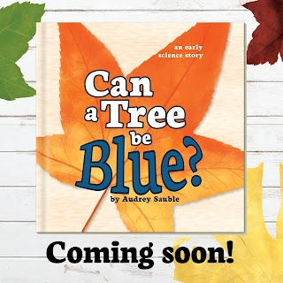 book cover for Can a Tree be Blue?