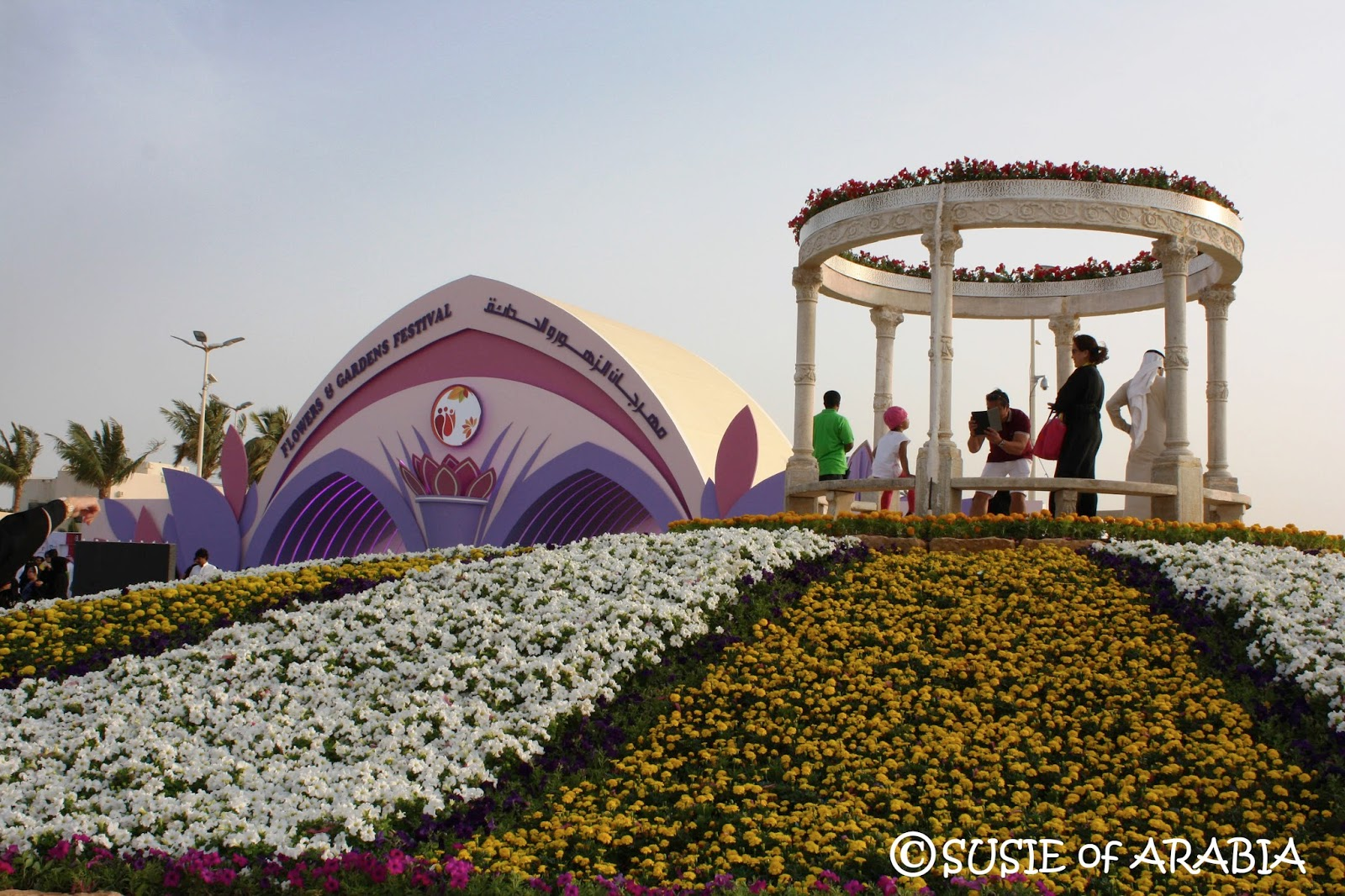 Hanging Chair Jeddah Swing Egg Susie Of Arabia Yanbu Flower Festival 2016