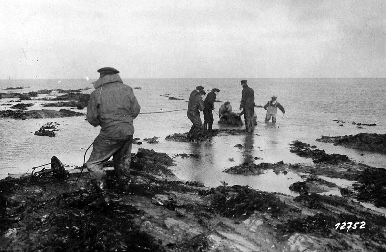 A mine is dragged ashore on Heligoland, in the North Sea, on October 29, 1918.