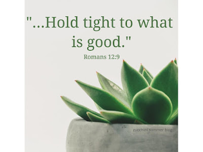 scripture, romans, hold tight to what is good, bible verse