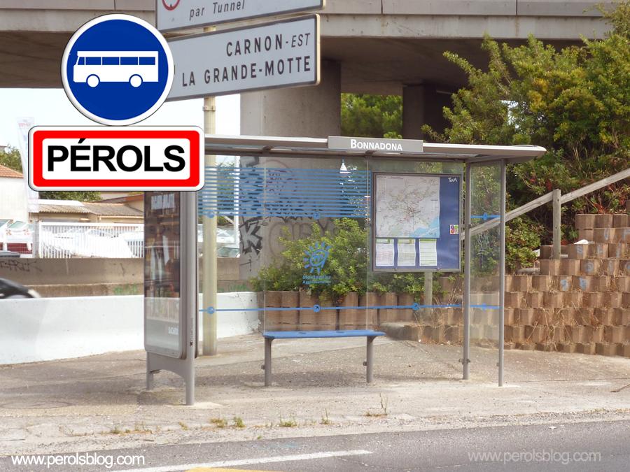 Bus TAM Bonnadona