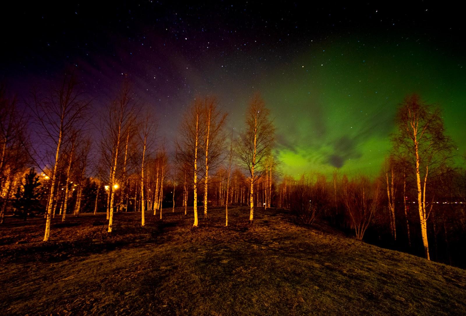 Come fotografare l'aurora boreale e dove vederla a Rovaniemi