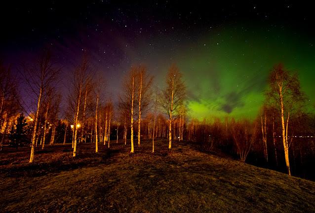 Aurora boreale dall'Arktikum park-Rovaniemi