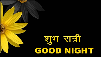 Beautiful Good Night Image in Hindi