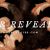 Cover Reveal: ONCE UPON A BROKEN HEART by Stephanie Garber