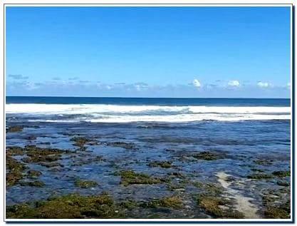 Rute ke Pantai Sepanjang dari Jogja